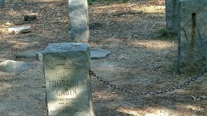 072317-Thoreau-cabin-site
