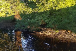 072517-evening-river-refection