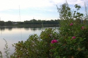 080717-Seekonk-River-morning