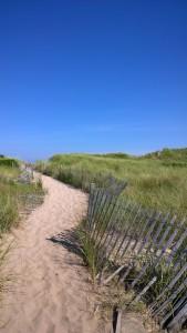 081317-dune-path-New-Shoreham-RI