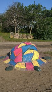 081617-turtle-on-Painted-Rock-BI