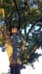100217-strange-pillar-Wayland-Square