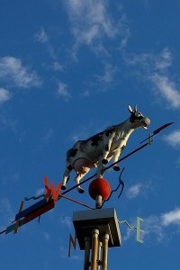 100617-Davis-Sq-cow-in-sky