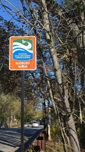 102017-Sudbury-River