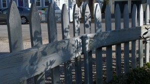 022118-shadows-on-picket-fence
