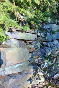 022718-leaf-shadows-stone-wall