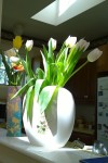 050918-tulips-in-kitchen