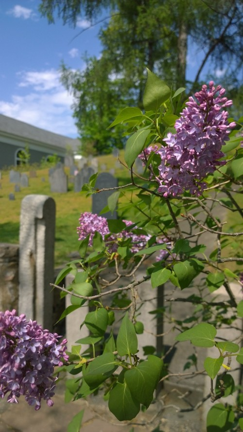 051018-lialcs-and-graveyard