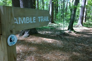 051318-Amble-Trail-Hapgood-Wright-Town-Forest