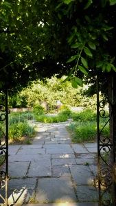 052318-Buttrick-garden-North-Bridge-ConcordMA