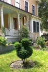 060718-topiary-Concord-MA
