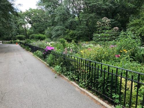 071118-Riverside-Garden-1