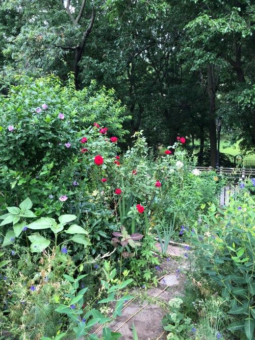 071118-Riverside-Garden-2
