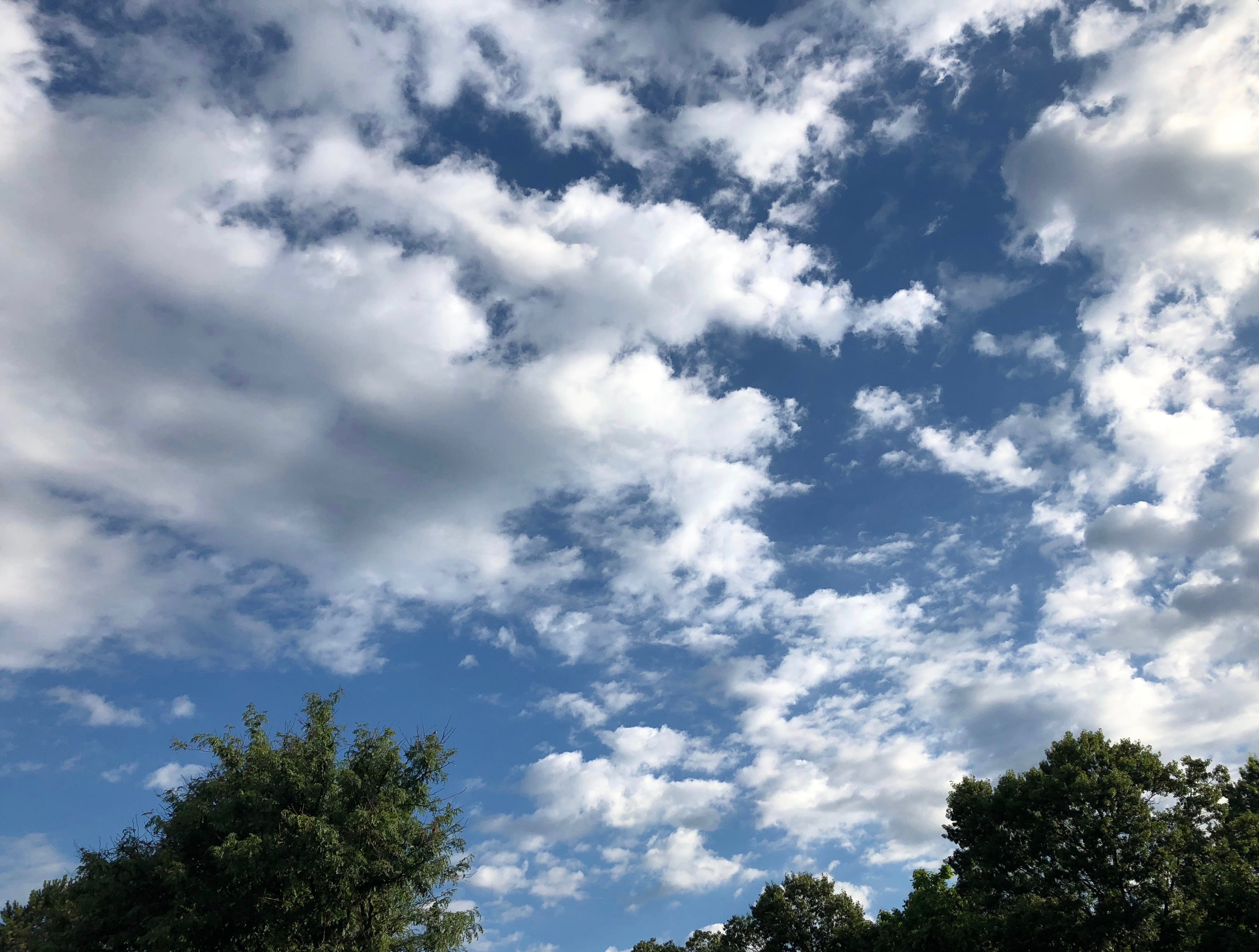 071818-clouds-over-trees 2