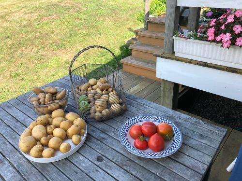 081218-garden-produce
