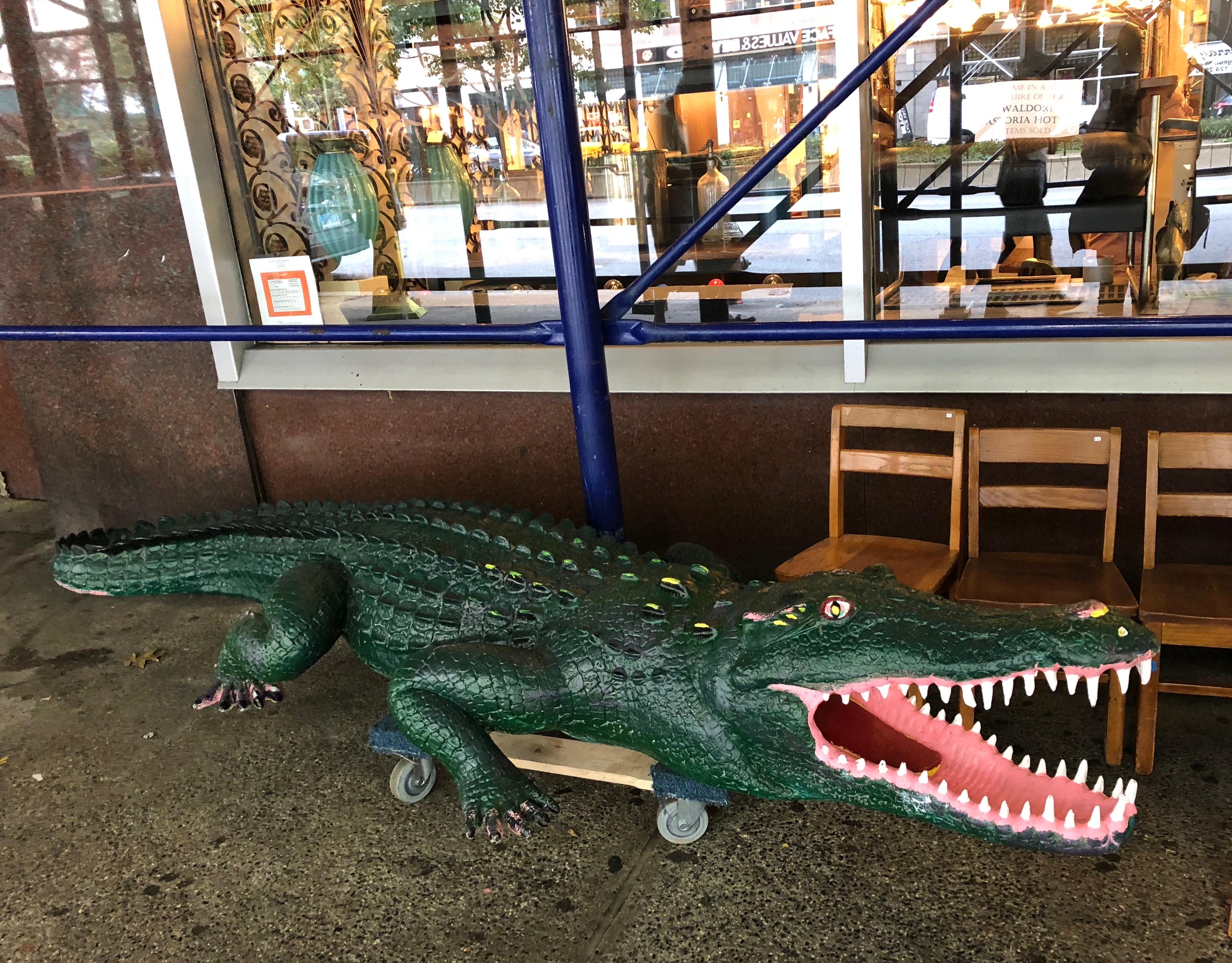 091918-alligator-in-New-York