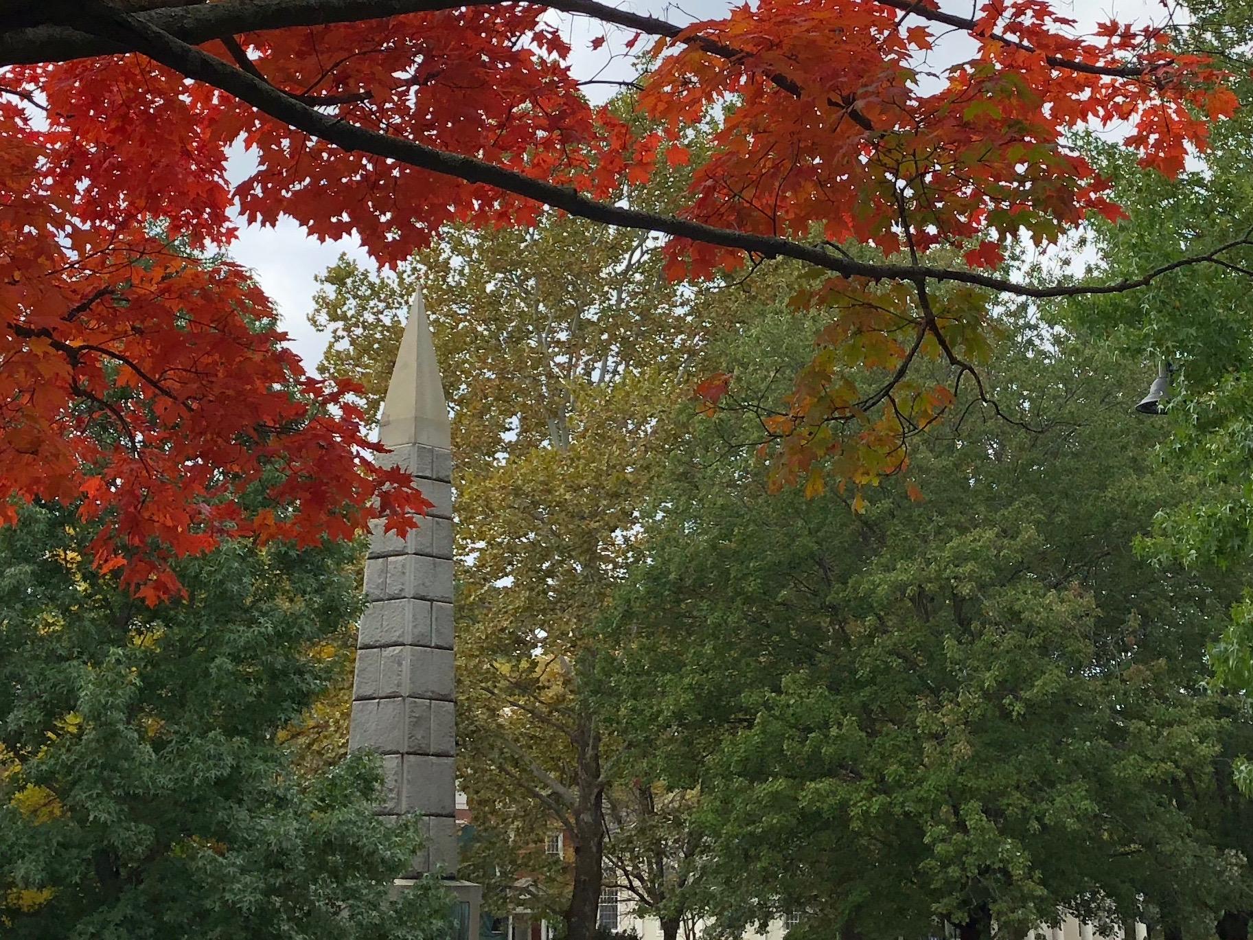 100918-fall-in-ConcordMA