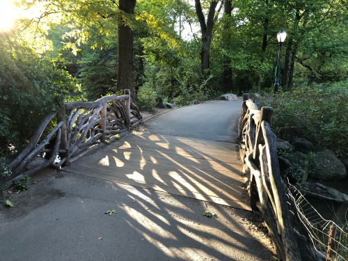 102418-fairytale-bridge-Central-Park