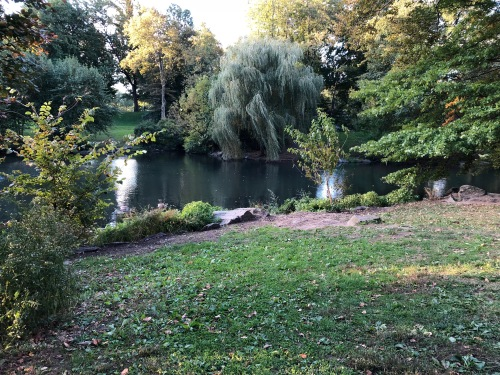 102418-Good-Morning-Central-Park