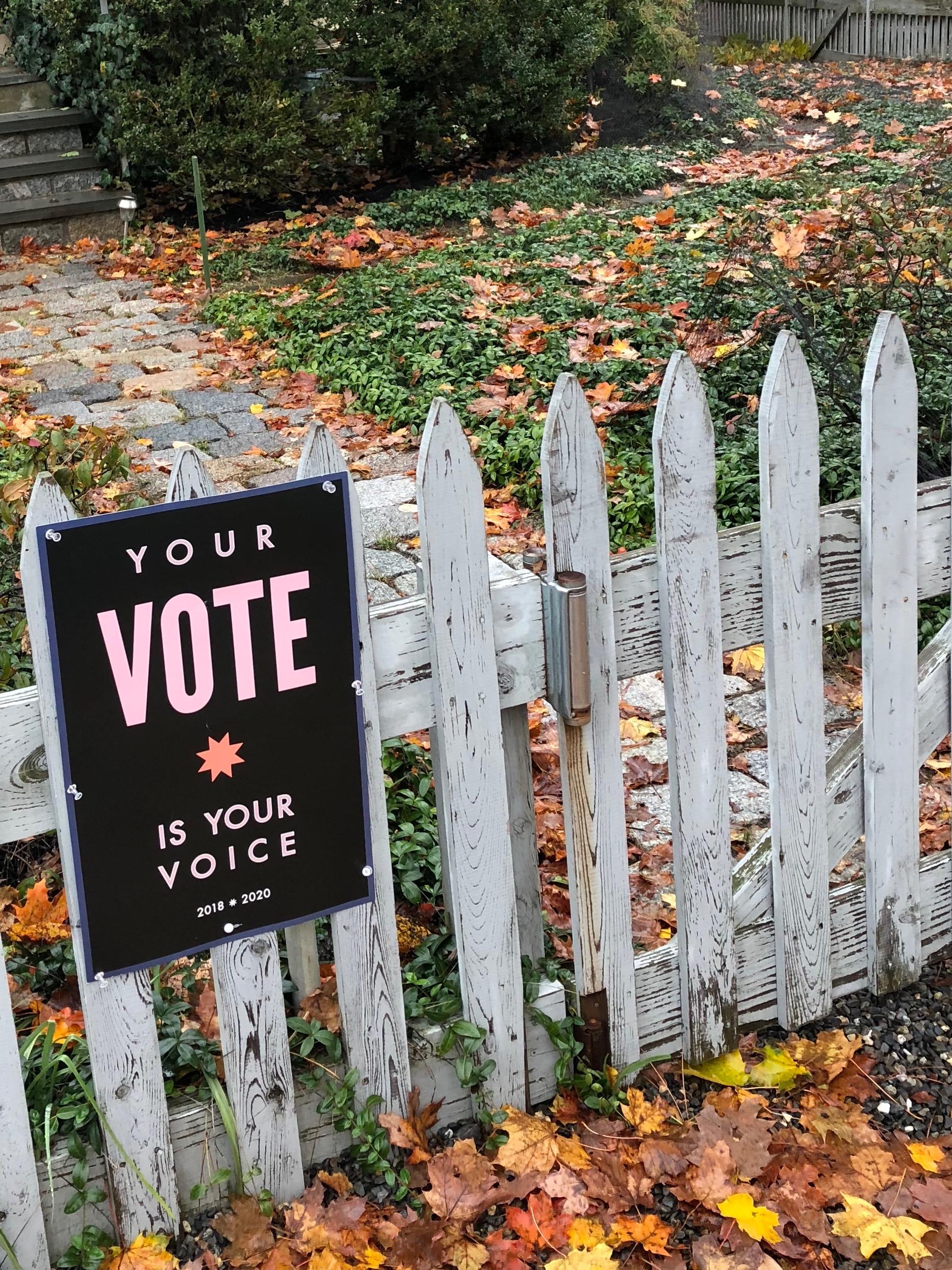 110218-VOTE