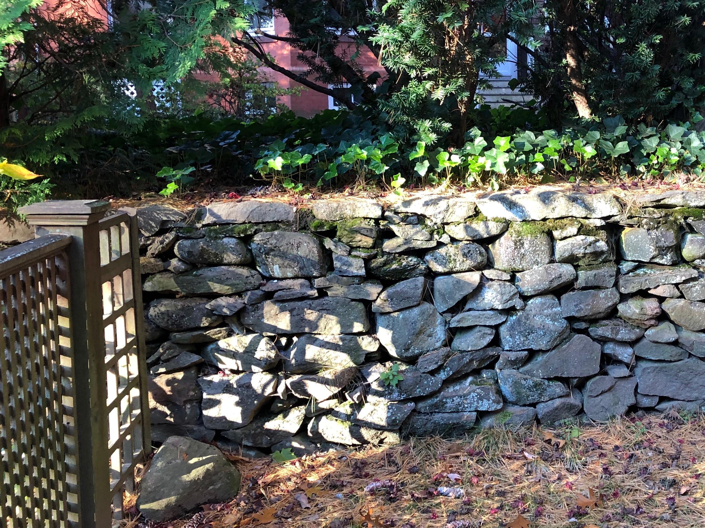 110918-light-thru-fence