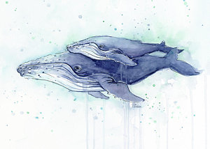 whales-humpback-watercolor-mom-and-baby-olga-shvartsur