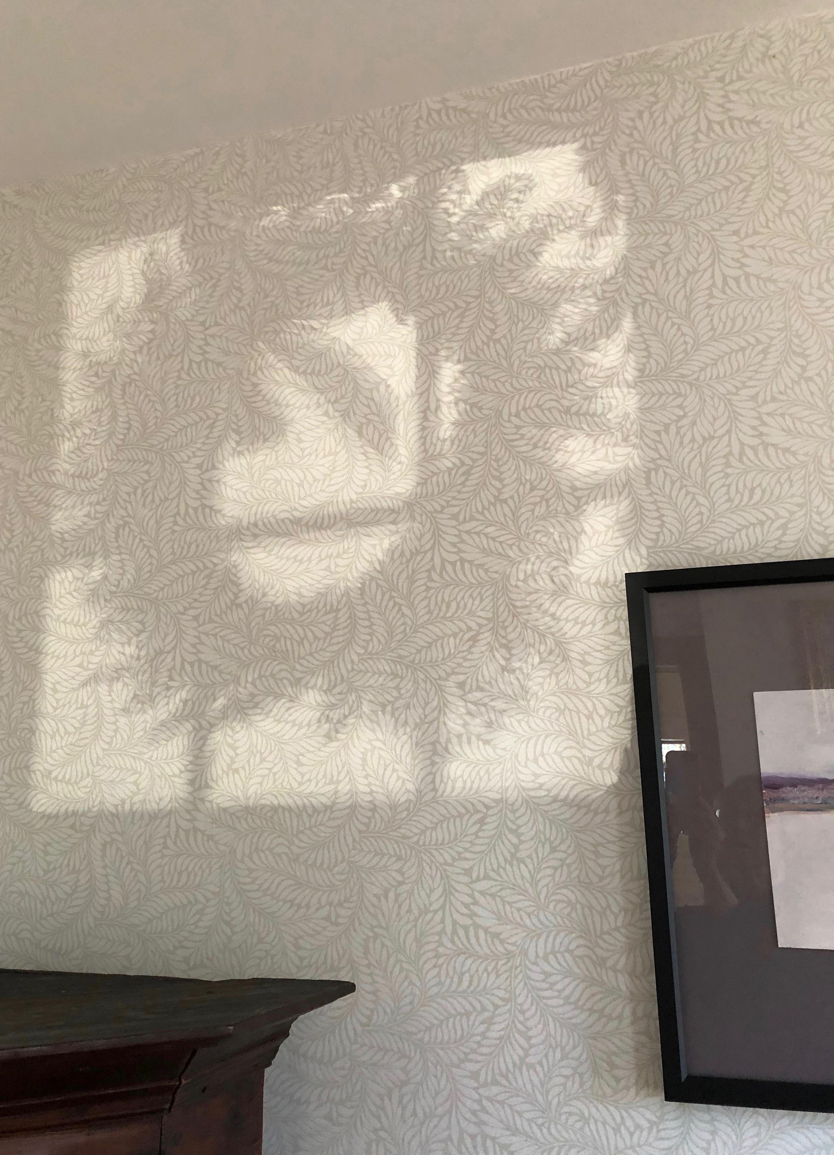 120718-shadow-of-Xmas-wreath