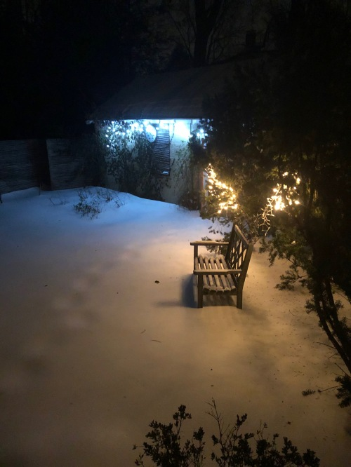 012319-snow-at-night