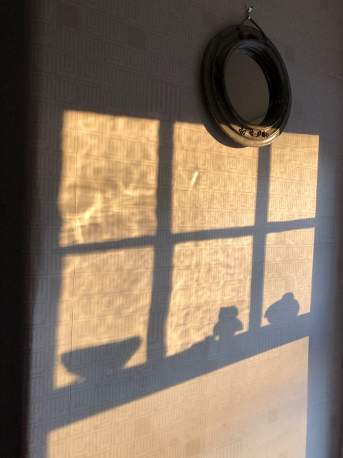 032019-clay-bird-shadows-in-window