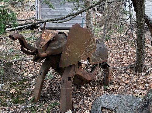033019-elephant-in-the-yard