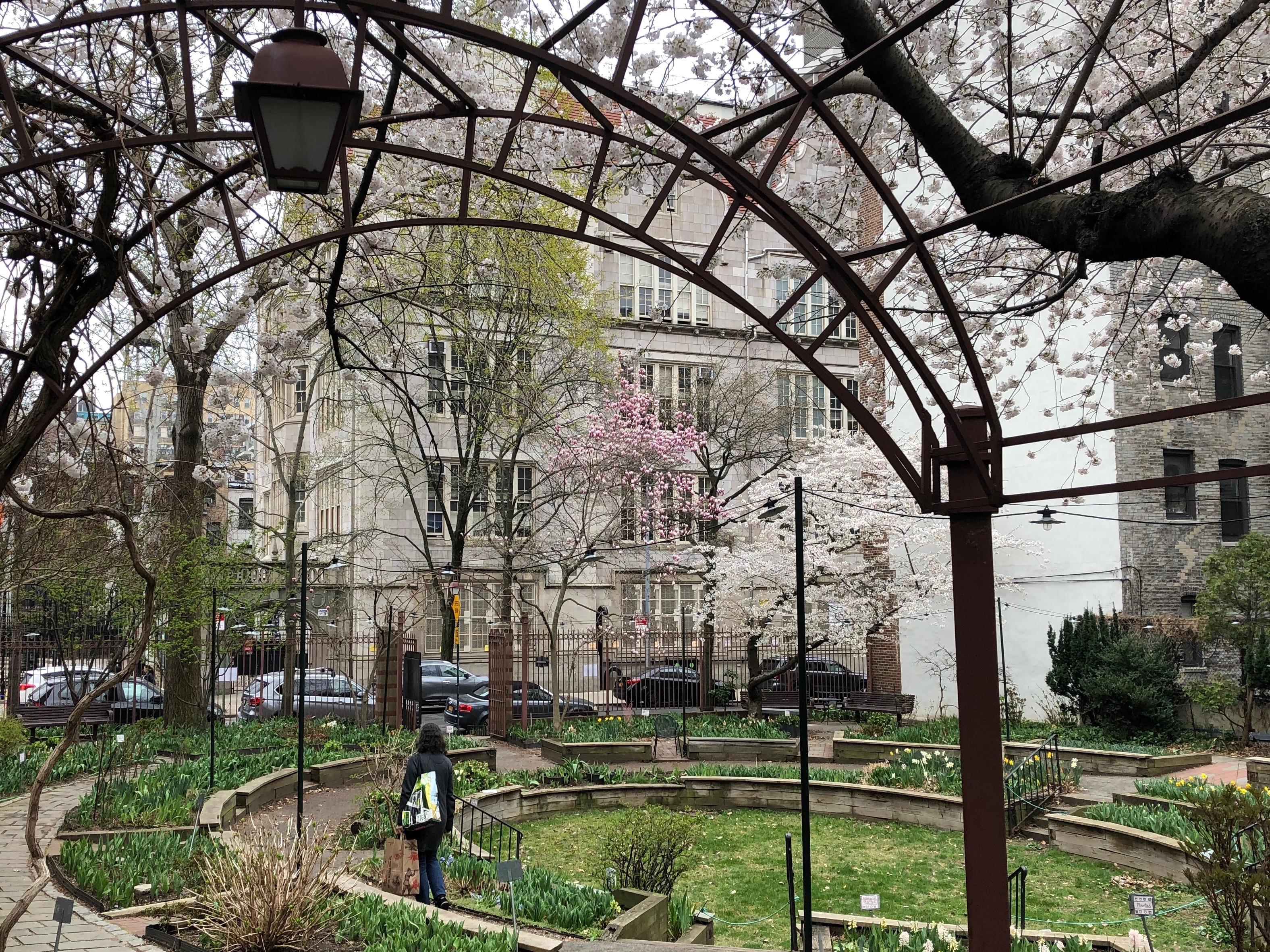 041219-.community-garden-in-spring