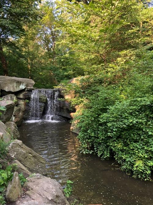 072619-babbling-brook-Central-Park