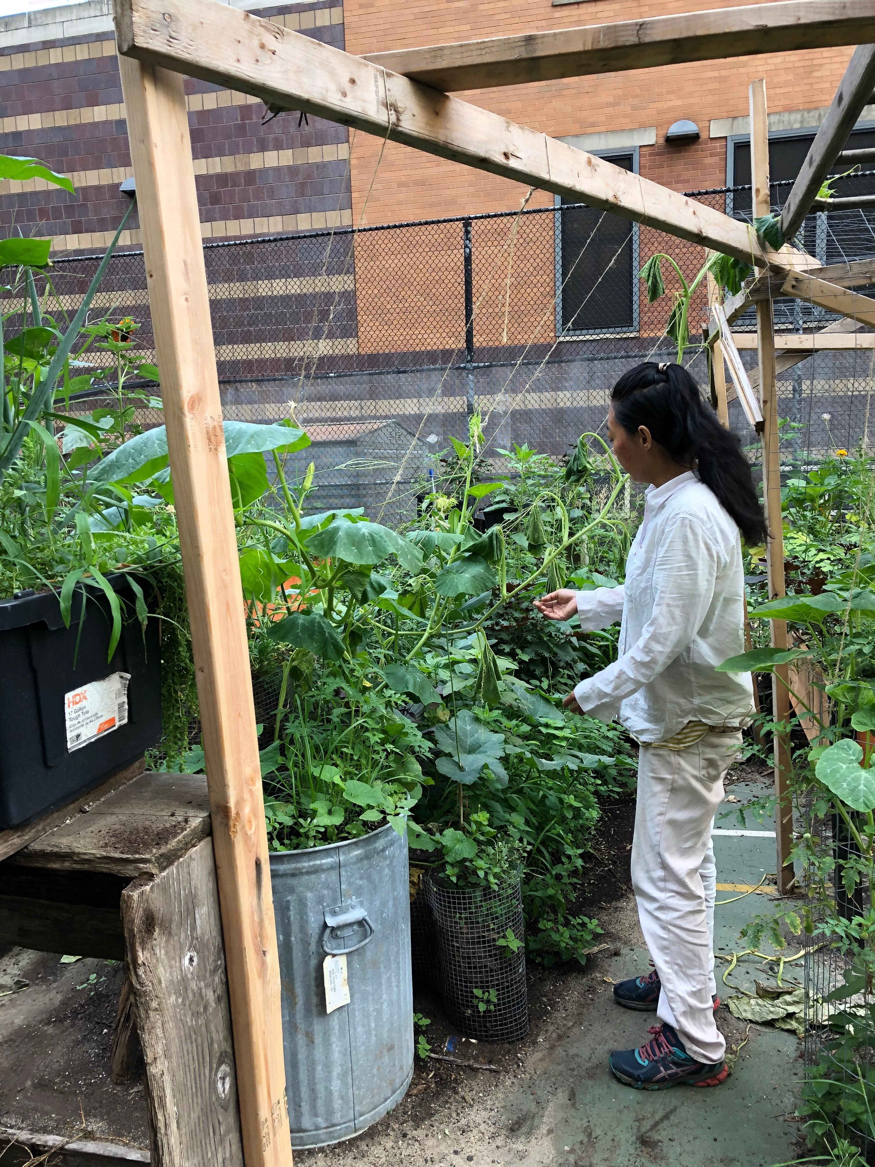 072719-Jae-in-organic-garden