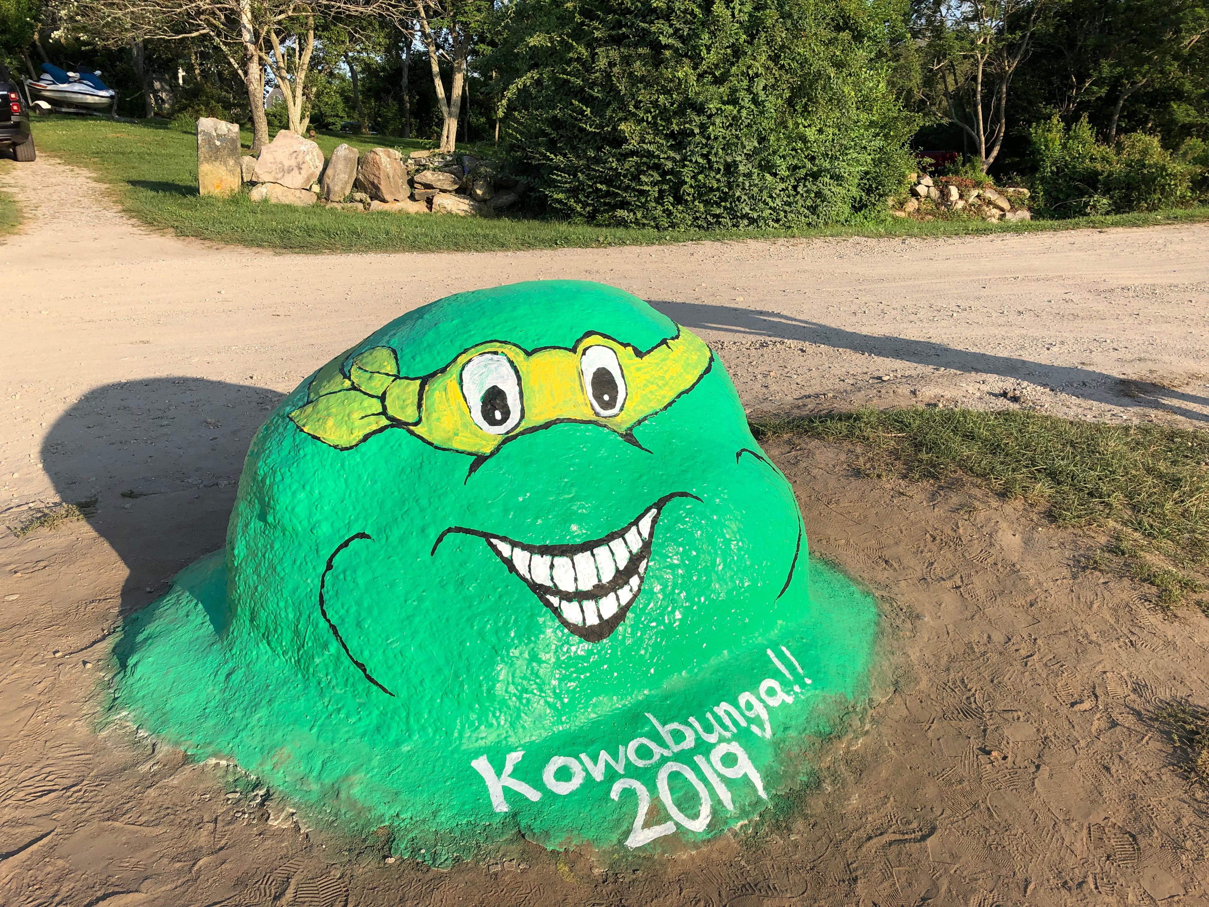 080219-Ninja-Turtle-Painted-Rock-B!