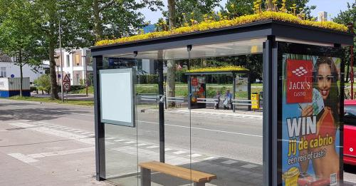bus-stop-bees-1562873127347