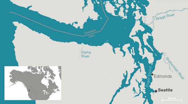 beaver-map-saltwater-beavers