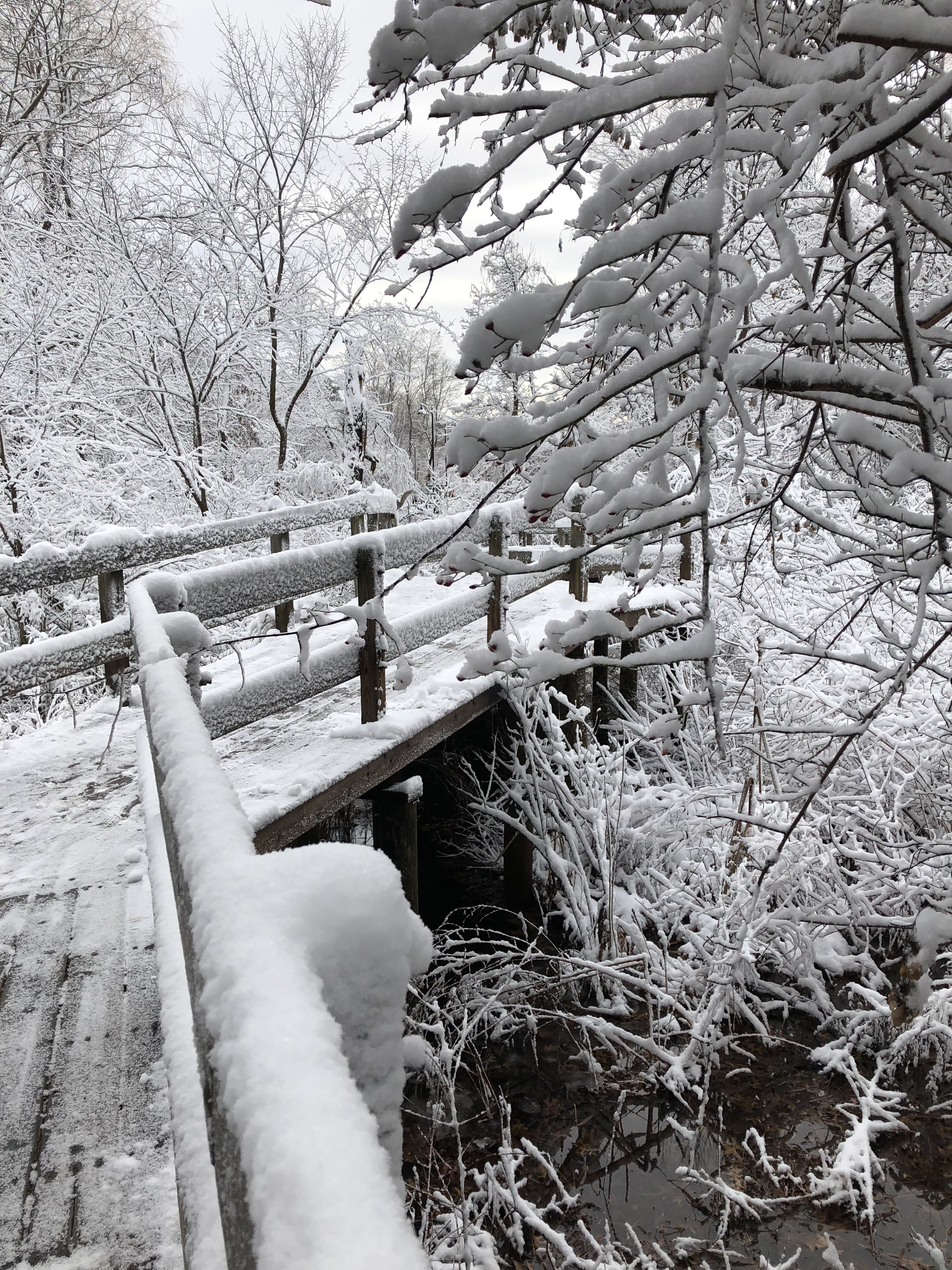 121119-footbridge-in-snow