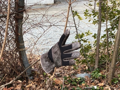 030420-another-floating-glove