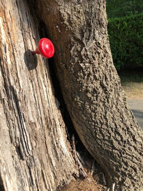 061020-mystery-doorknob