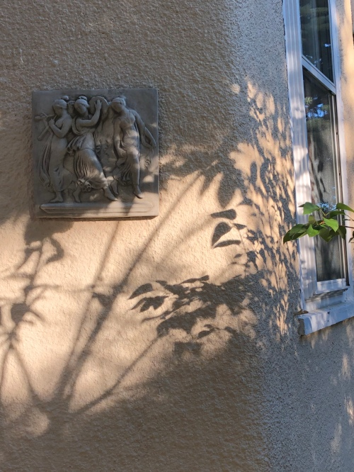 061920-shadows-muses-on-stucco-straighter