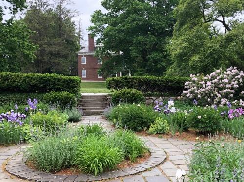 60520-Buttrick-House-iris-garden
