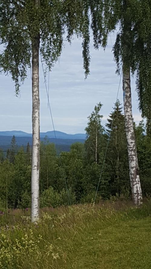 20200710-Dalecarlia-Sweden